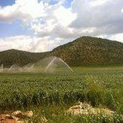صنایع کشاورزی و دامداری