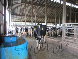 filtration قیمت فروش دستگاه تصفیه آب گاوداری